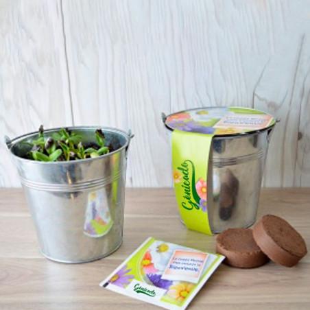 Kit publicitaire de semis - pot zinc 12cm