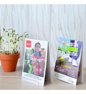 Sachet de graines de fleurs publicitaire