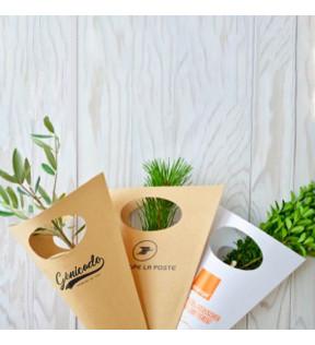 Cornet Kraft pour Plants de Feuillus